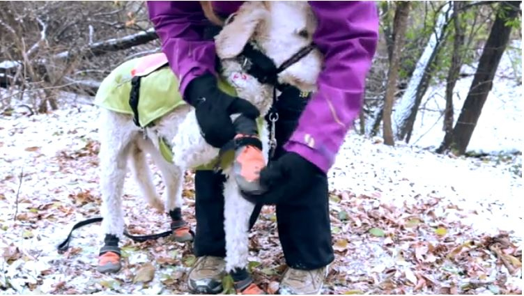 Winter Hiking Tips with Dr Sarah