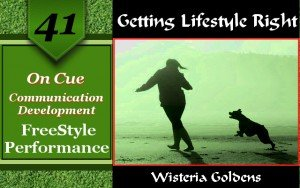 On Cue Communication Development Freestyle Performance Wisteria Goldens English Cream Golden Retriever Dog Training Getting Lifestyle Right series
