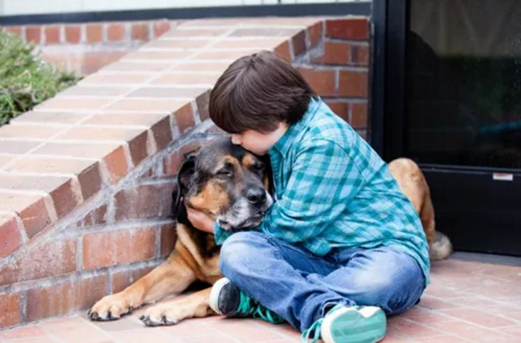 Pet Loss Guide for Families