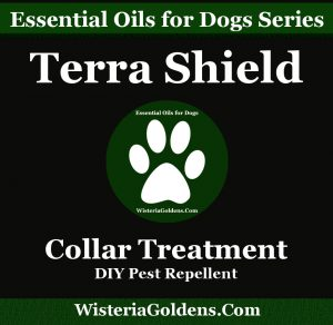 essential oils support dogs naturally Terra Shield Collar Treatment DIY Pest Repellent recipe