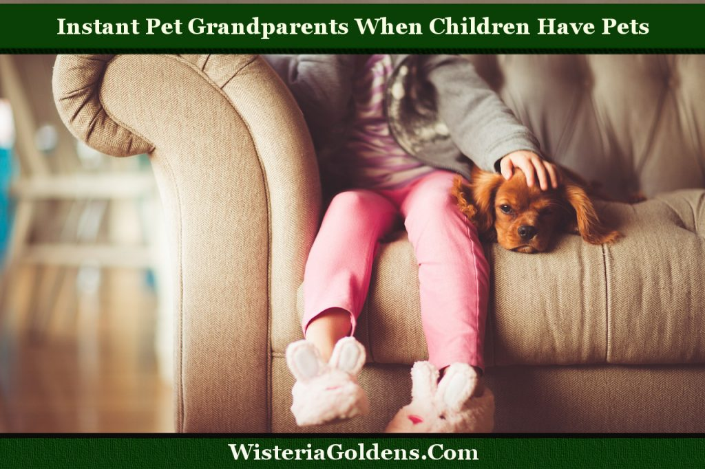 Instant Pet Grandparents