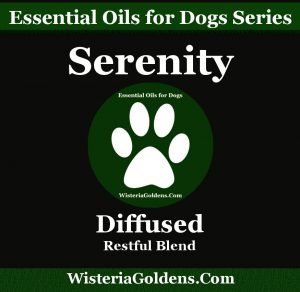 Serenity - Anxiety Support Diffuser