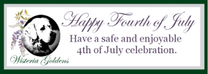 Featured This Month Fireworks Safety Guides Healthy Pets Longer Life Blog