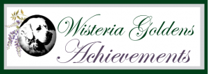 Featured this Month Wisteria Goldens Achievements