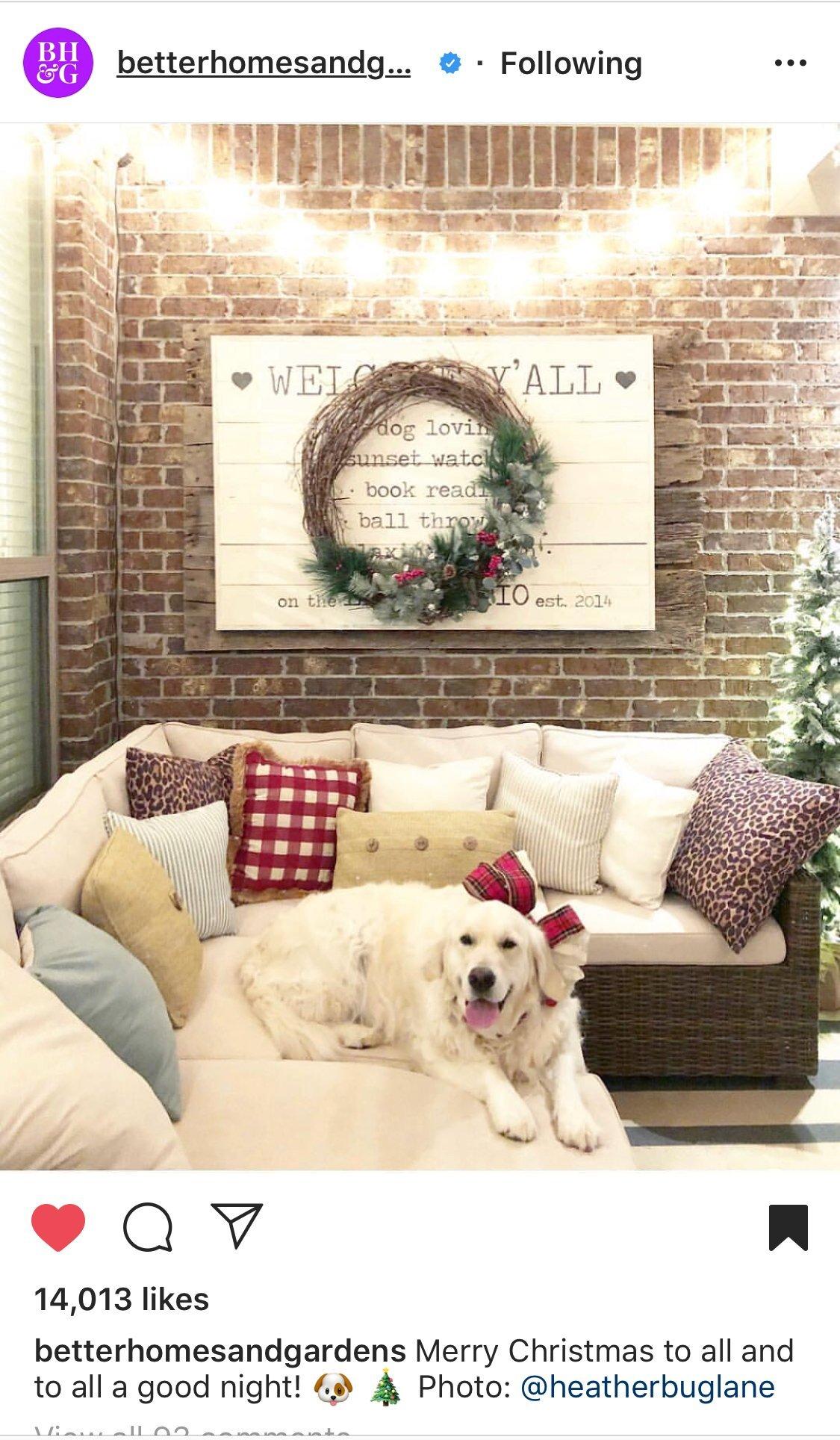 english cream golden retriever puppies, happy families, wisteria goldens, moses honor thor
