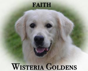 Our Girls Faith Wisteria Faithful Angel of Love